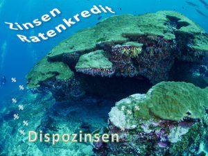 Ratenkredit und Dispokredit, © IN, Studenten-Giro-Konto.de
